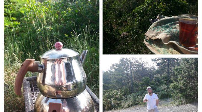 Yeni Mekanımız Taşdelen Ormanı